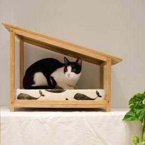 cama gatos madera