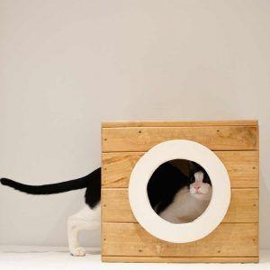 modulo madera gato cierzo